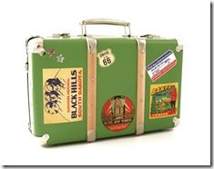 Foto Voyager Suitcase Green