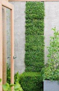 jardingeometrico1