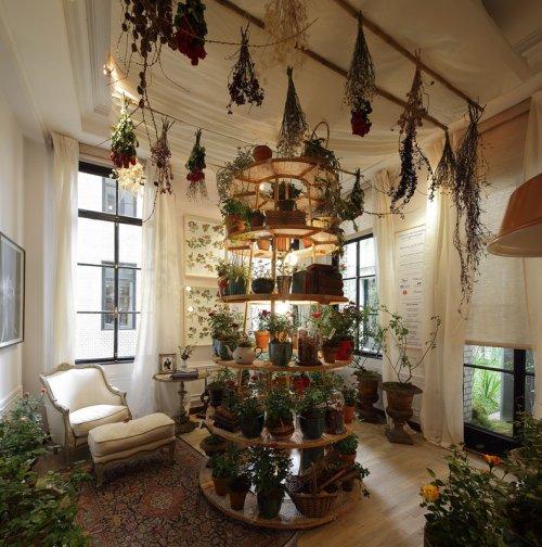 Jardines de invierno decocasa for Disenos de jardin de invierno