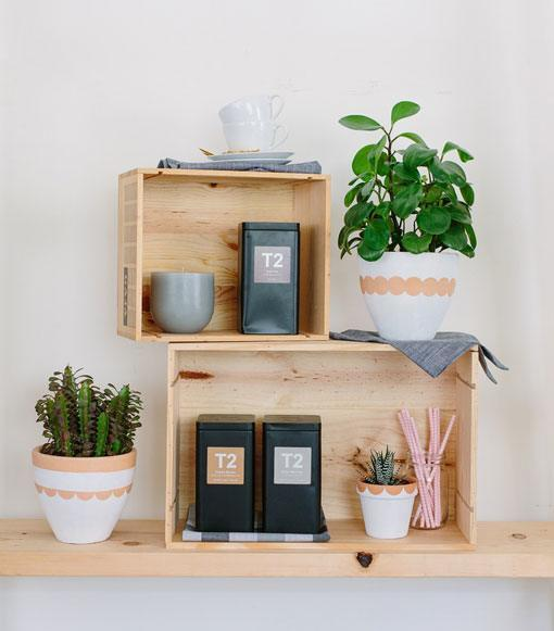 foto-macetas-estantes