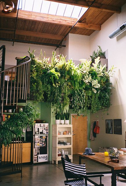 foto-jardin-escalera