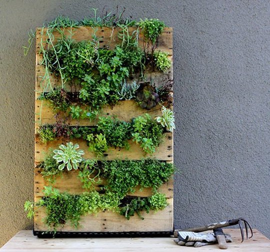 foto-palet-jardin