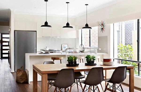 foto-terrario-cocina
