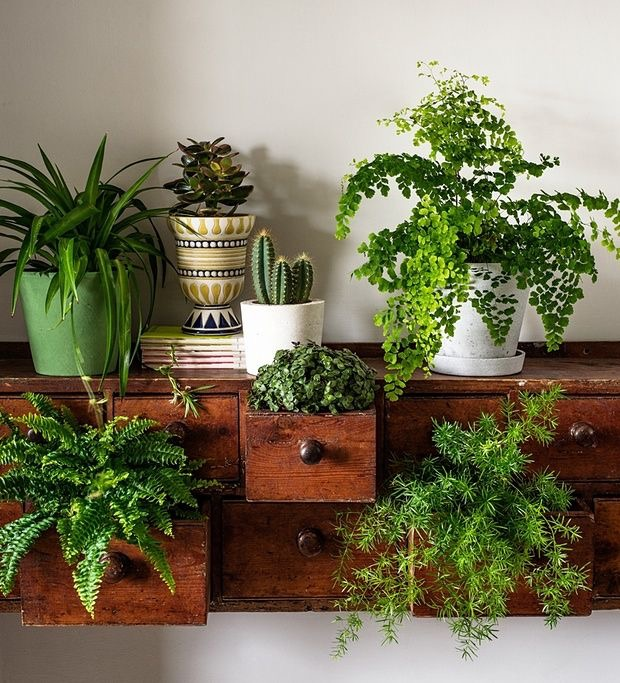 Decocasa el term metro de la decoraci n en internet - Mueble para plantas ...